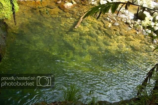 NaturalWaterPark1.jpg
