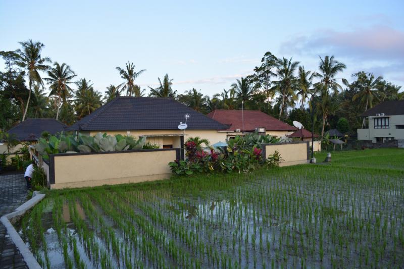 457950 المسافرون العرب فيلا deta junjungan rice field villa
