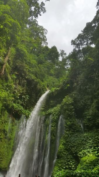 461162 المسافرون العرب جزيرة لومبوك الإندونيسية