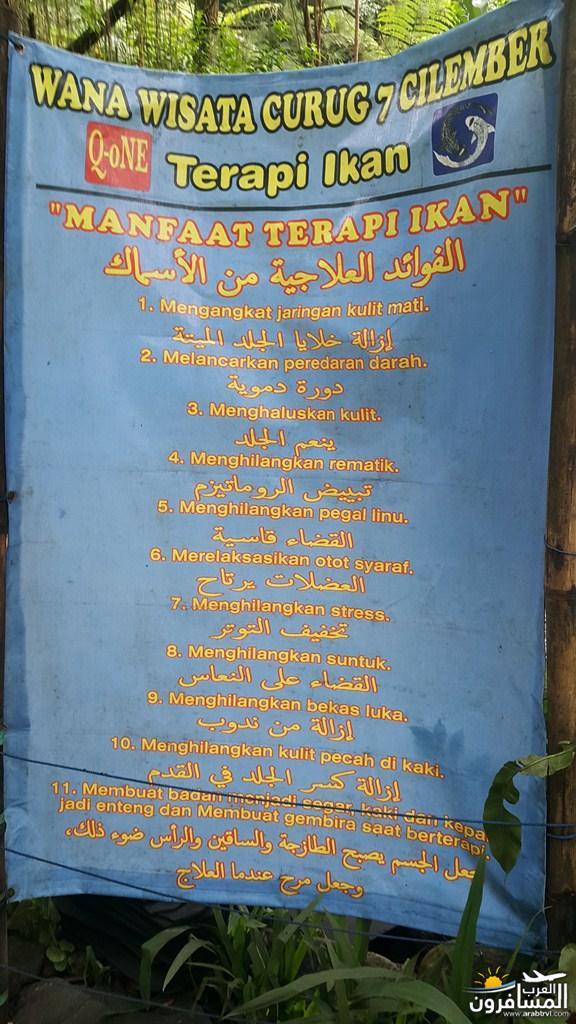 462355 المسافرون العرب اندونيسيا الجميلة
