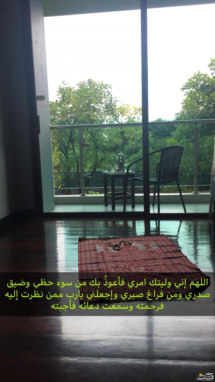 arabtrvl1509092225561.jpg