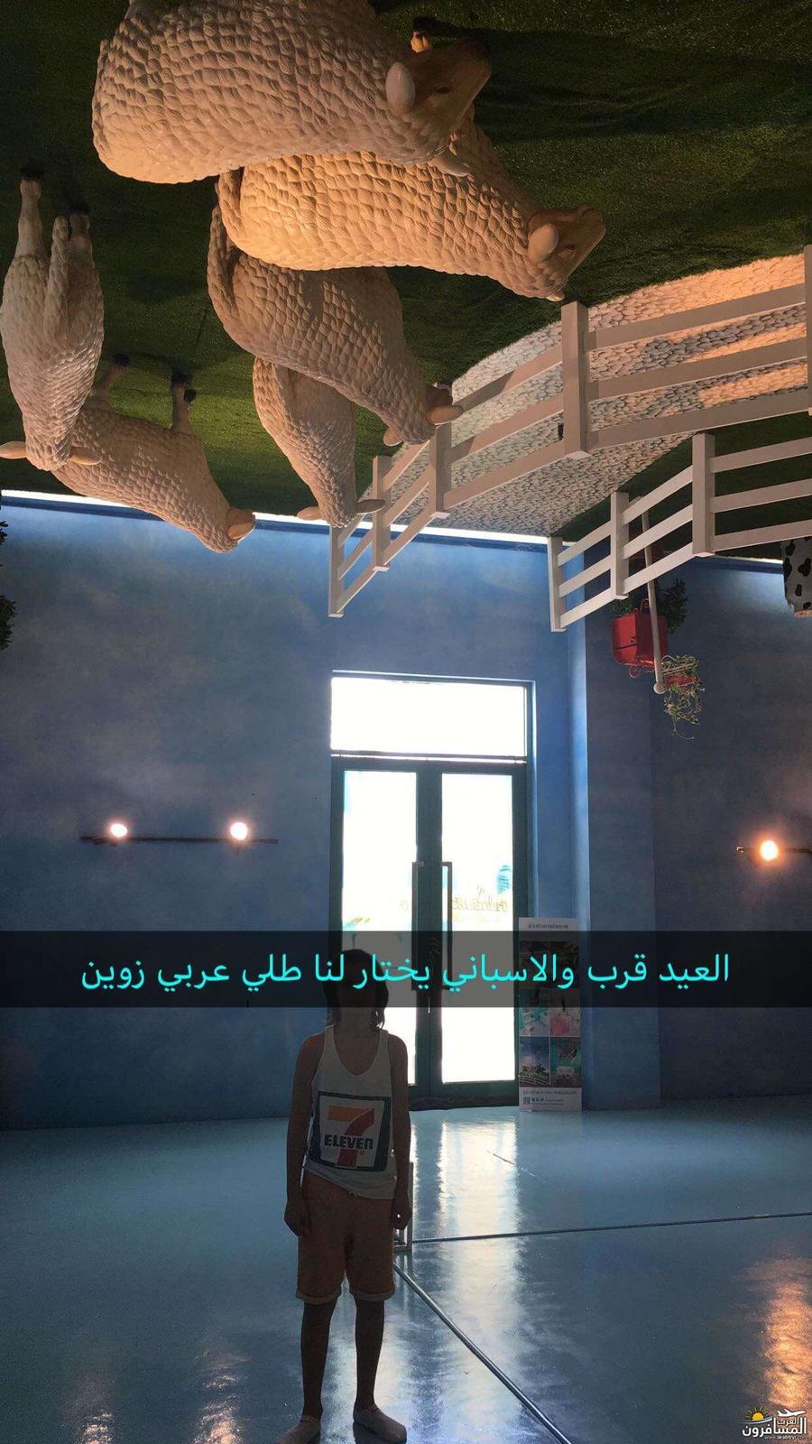 arabtrvl1509095737072.jpg