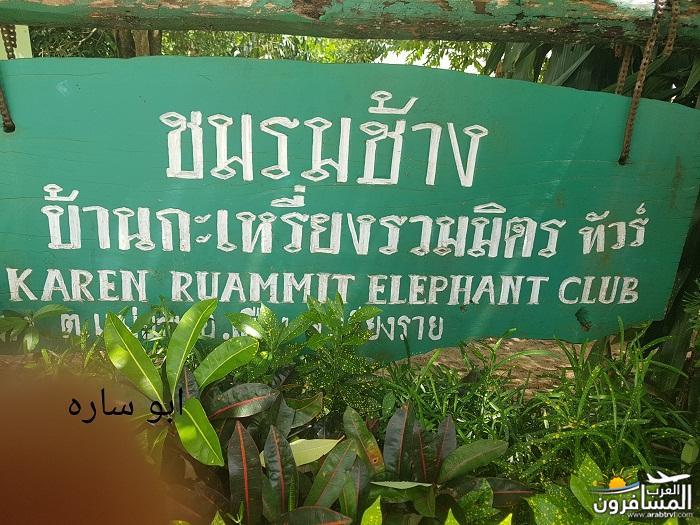 468867 المسافرون العرب ريف تايلاند