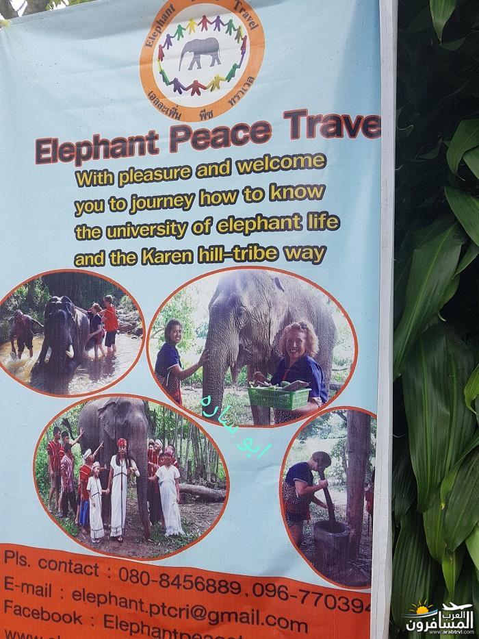 468868 المسافرون العرب ريف تايلاند