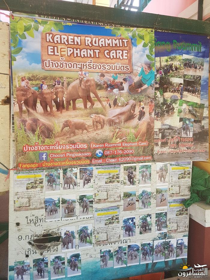 468871 المسافرون العرب ريف تايلاند
