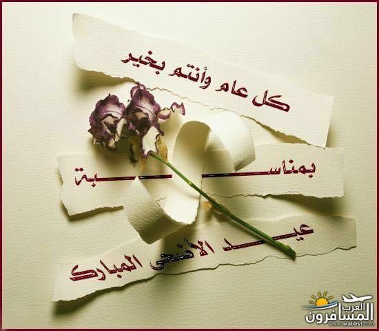 arabtrvl153482810221.jpg