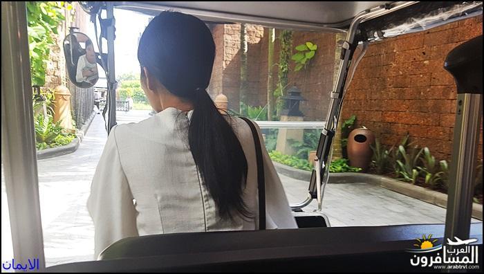 الأجواء التايلندية 469383 المسافرون العرب