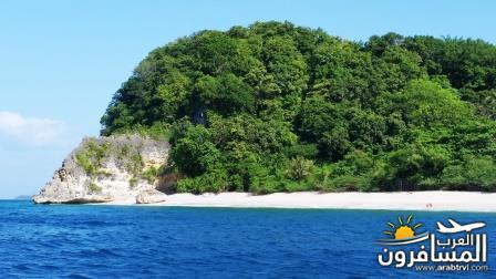 471505 المسافرون العرب جزيرة بورتوغاليرا