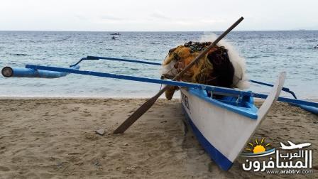 471520 المسافرون العرب جزيرة بورتوغاليرا