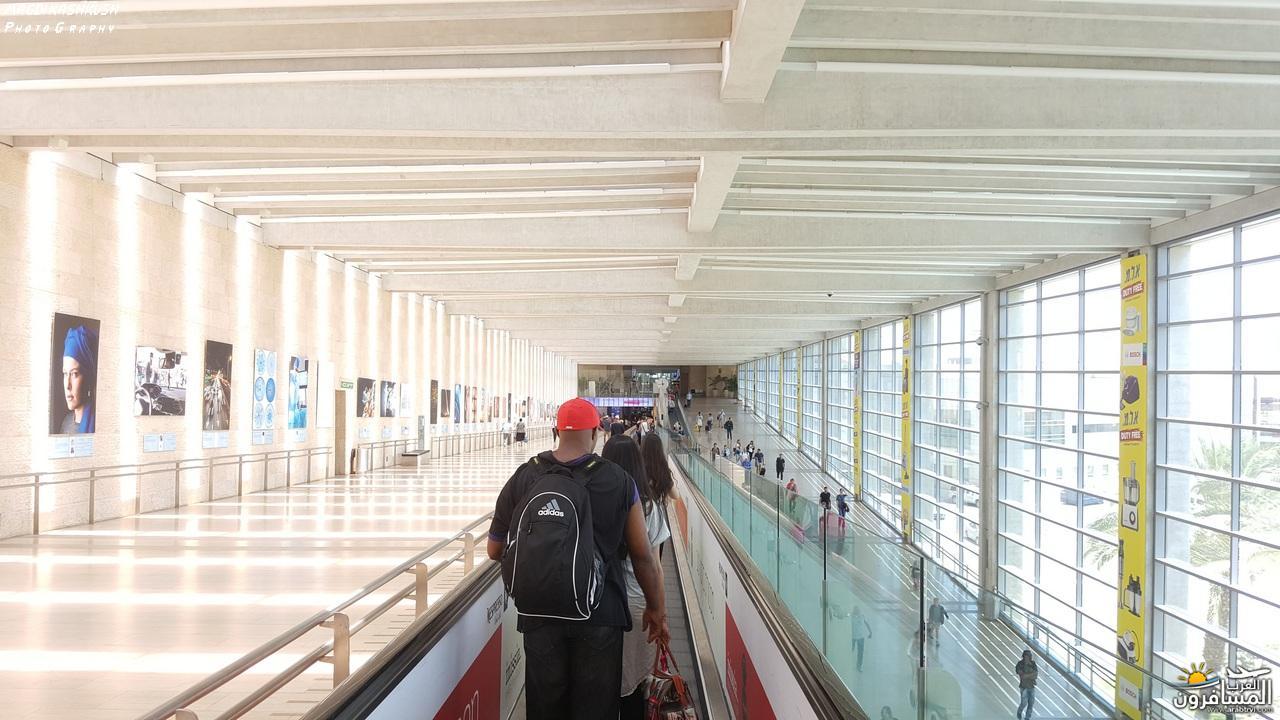 475154 المسافرون العرب بكين beijing