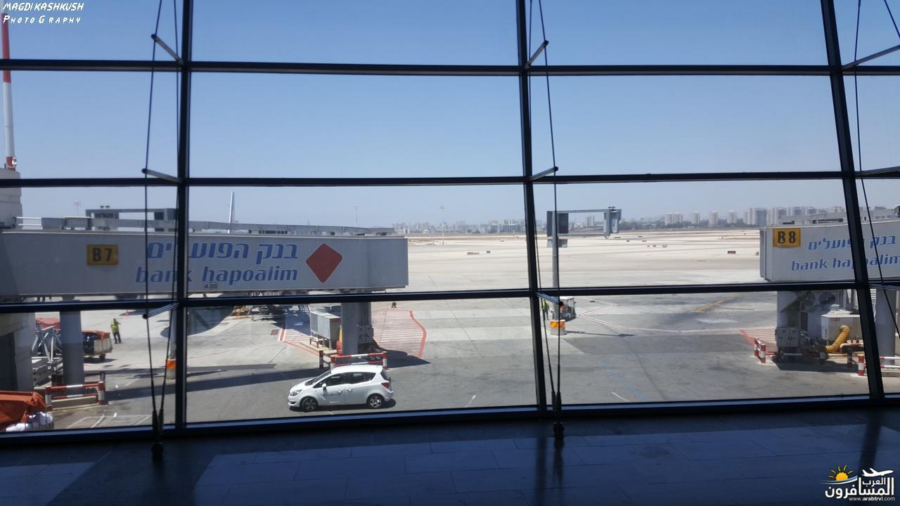 475240 المسافرون العرب بكين beijing