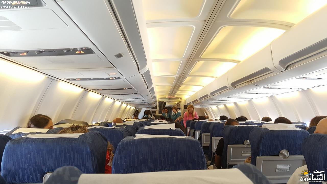 475243 المسافرون العرب بكين beijing