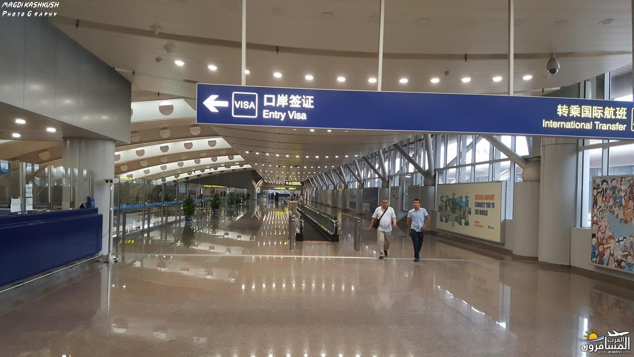 475283 المسافرون العرب بكين beijing