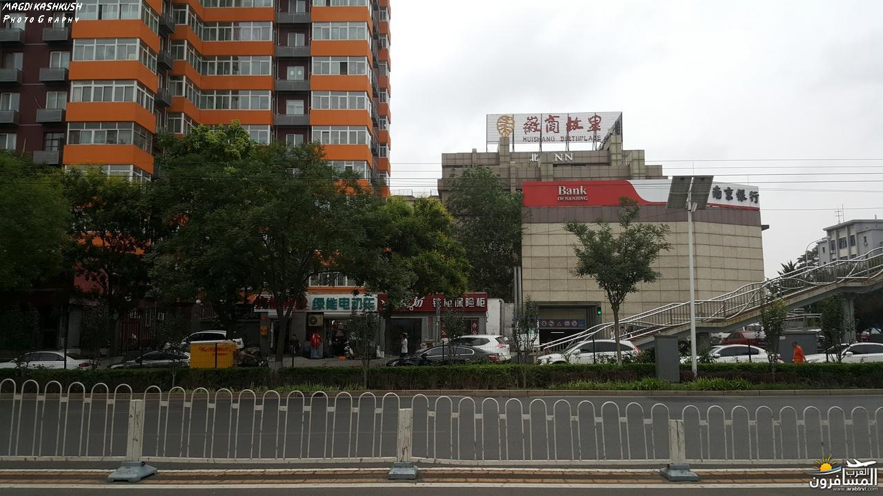 475308 المسافرون العرب بكين beijing