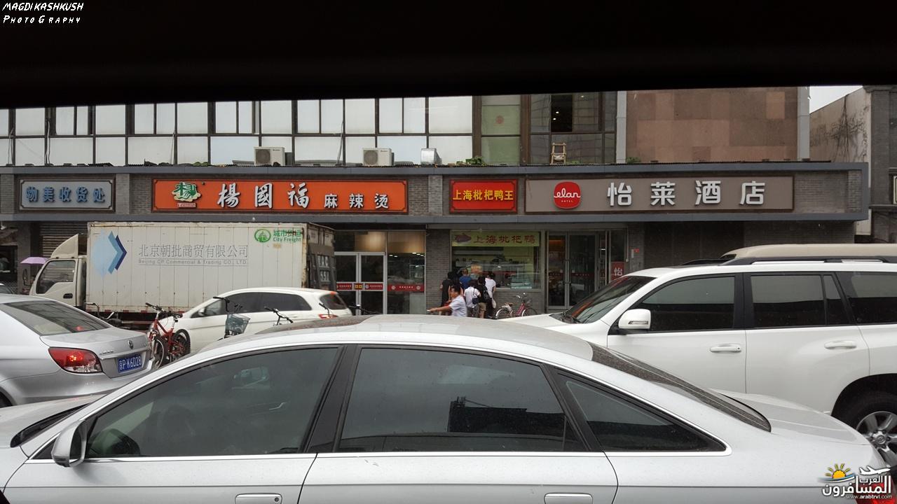 475309 المسافرون العرب بكين beijing
