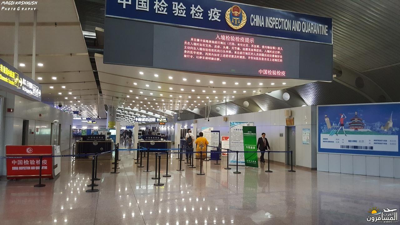 475428 المسافرون العرب بكين beijing