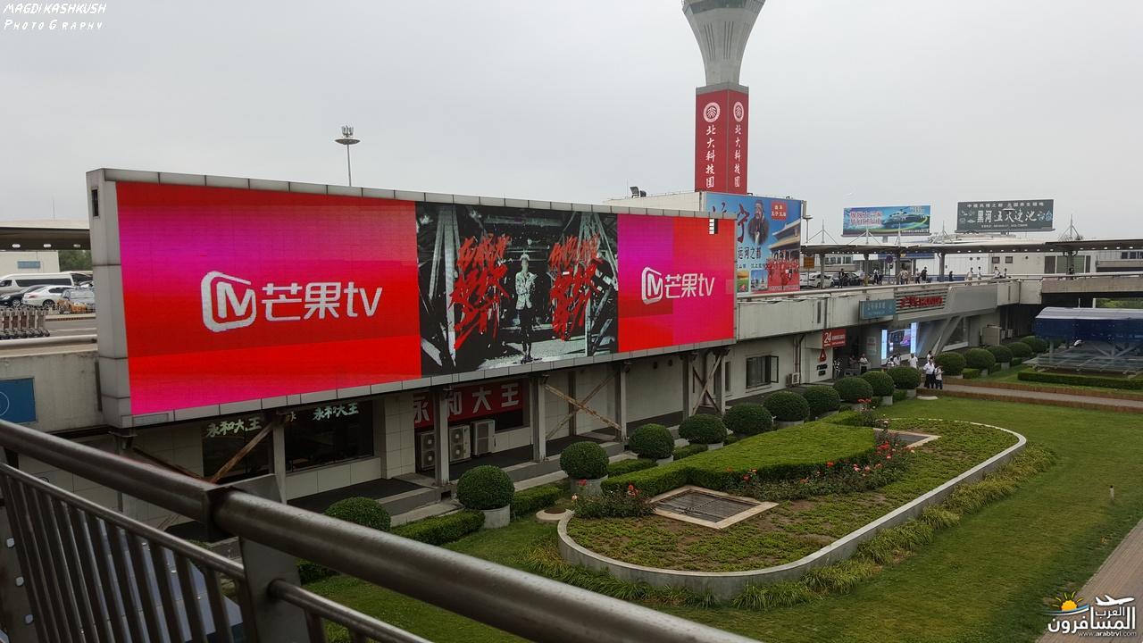 475439 المسافرون العرب بكين beijing