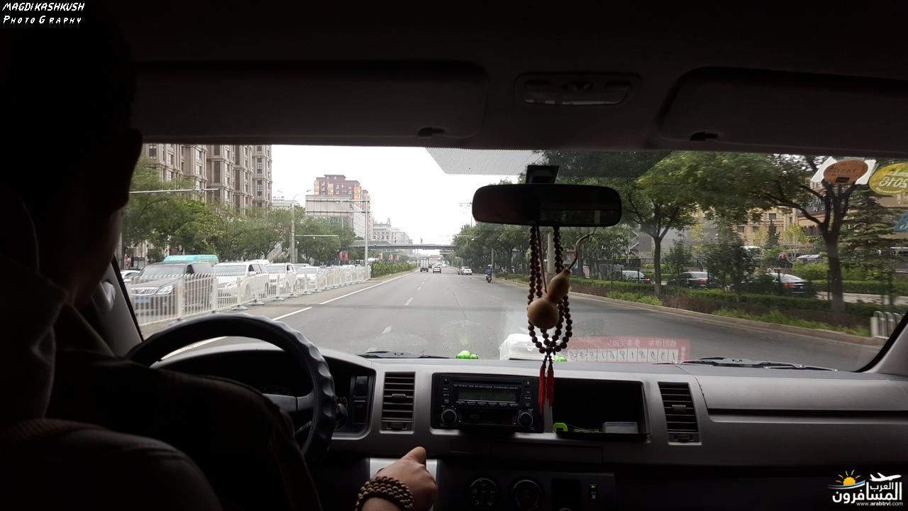 475453 المسافرون العرب بكين beijing