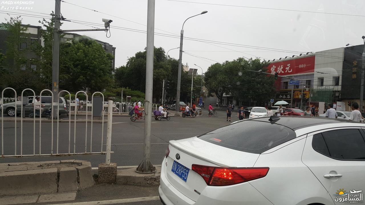 475458 المسافرون العرب بكين beijing