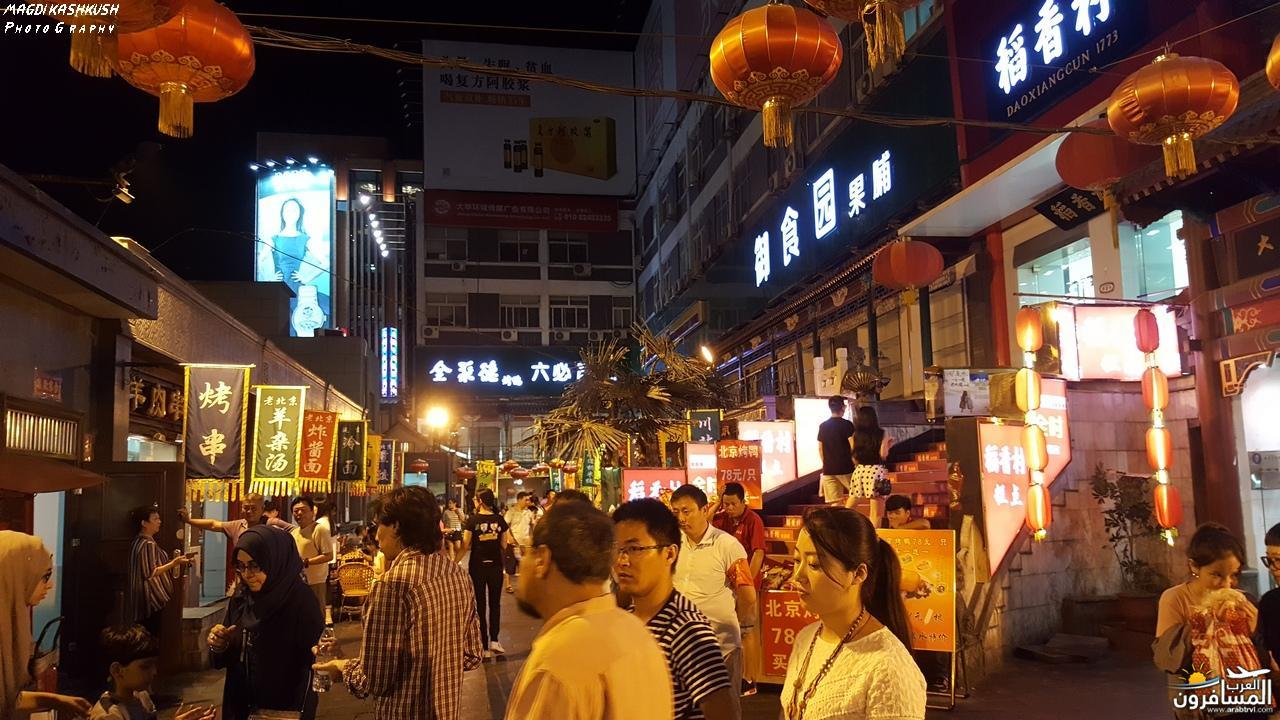 475505 المسافرون العرب بكين beijing