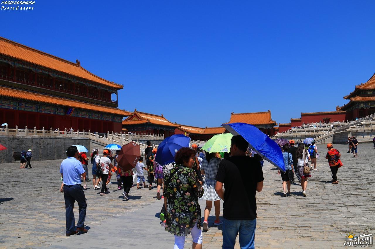 475663 المسافرون العرب بكين beijing