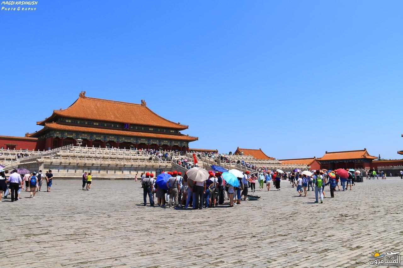 475665 المسافرون العرب بكين beijing