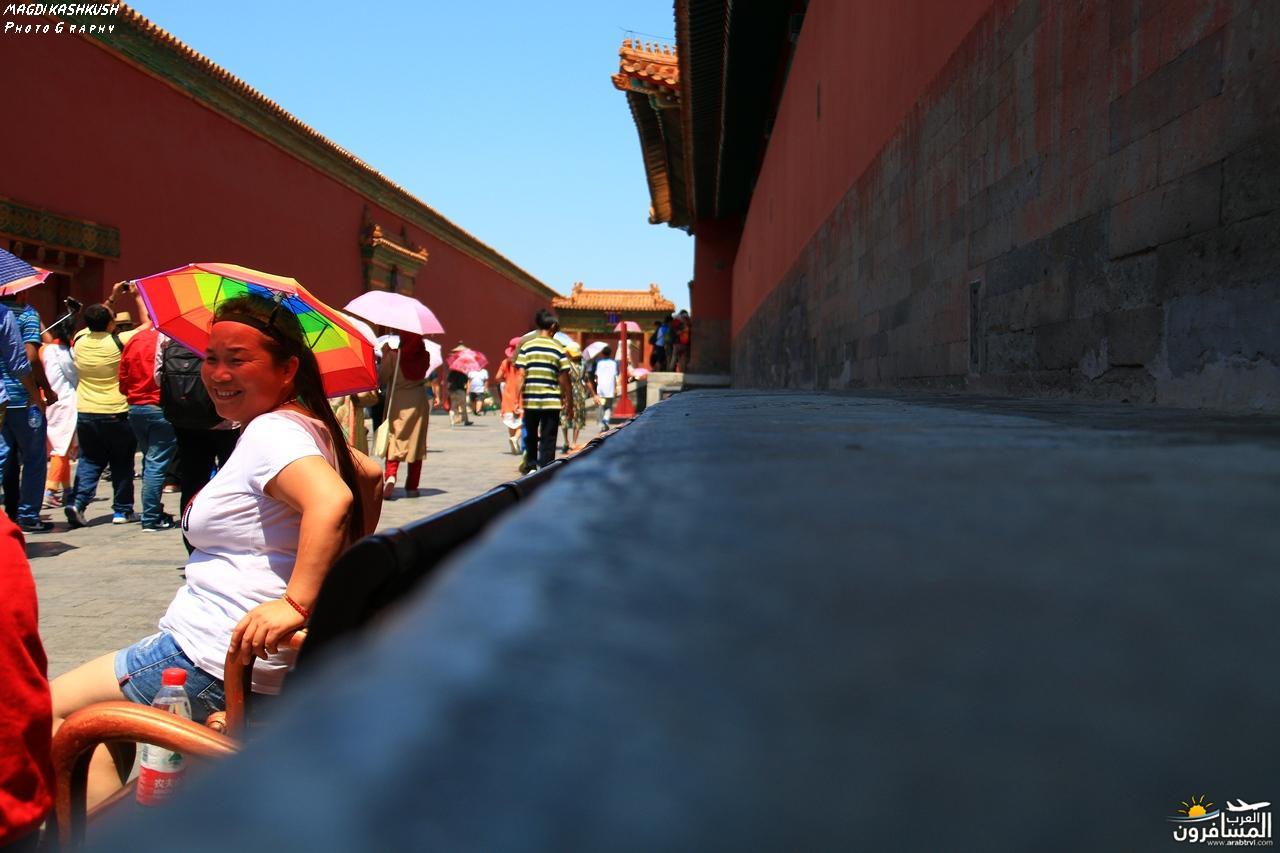 475695 المسافرون العرب بكين beijing