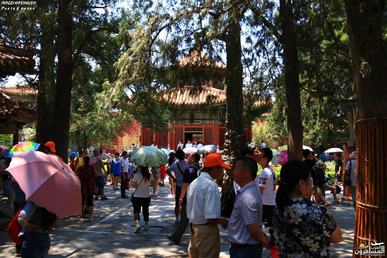 475734 المسافرون العرب بكين beijing