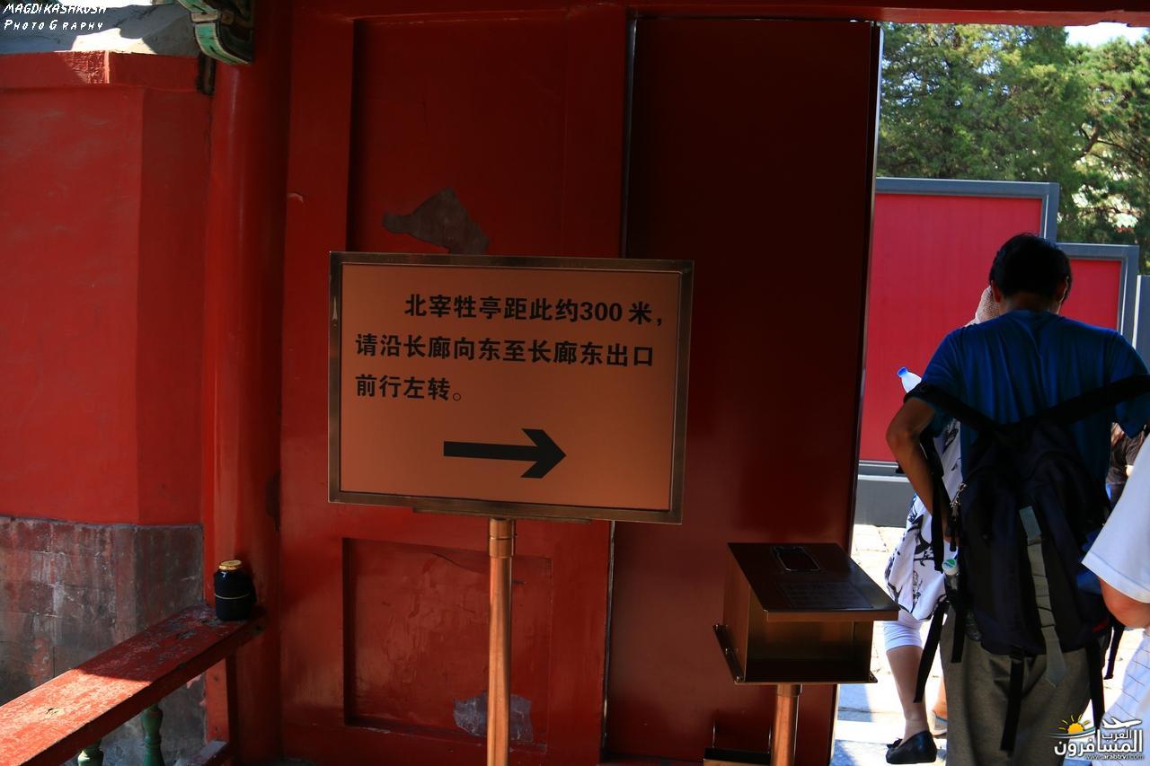475810 المسافرون العرب بكين beijing