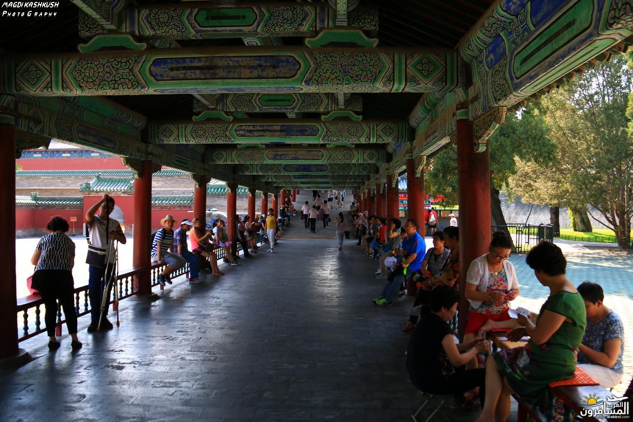 475815 المسافرون العرب بكين beijing