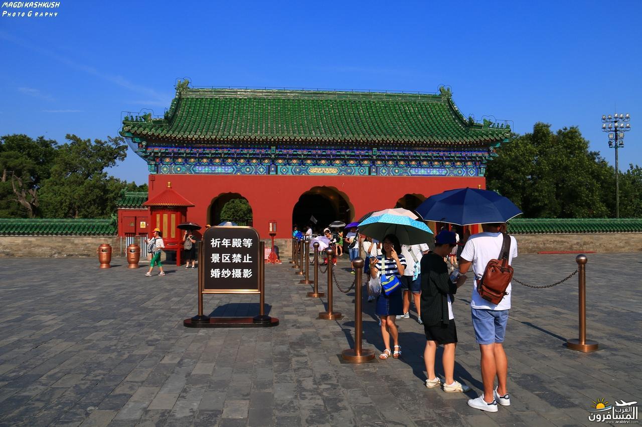 475852 المسافرون العرب بكين beijing