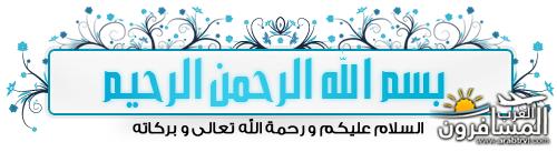 arabtrvl1516896350165.png
