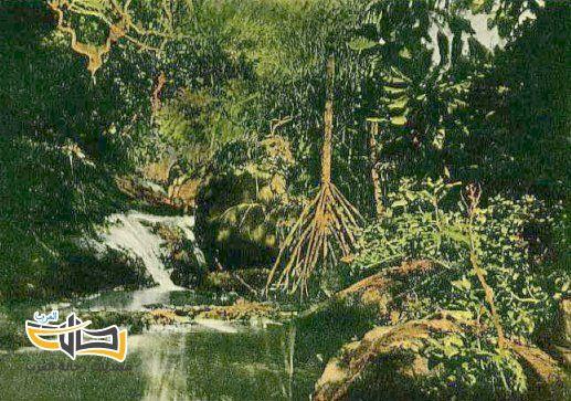 مناظر و مشاهد سياحية بديعة و جزيرة غوام صور 4818 المسافرون العرب