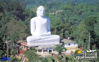 484715 المسافرون العرب الأماكن السياحية في سريلانكا