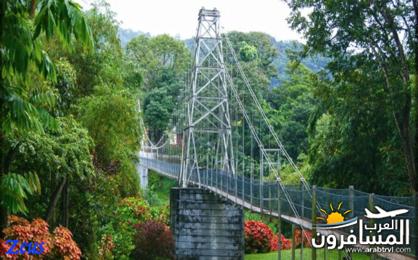 484721 المسافرون العرب الأماكن السياحية في سريلانكا