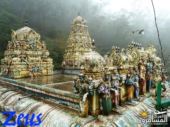 484739 المسافرون العرب الأماكن السياحية في سريلانكا