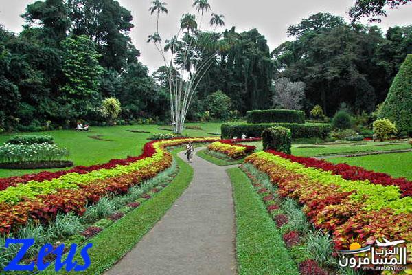 484742 المسافرون العرب الأماكن السياحية في سريلانكا