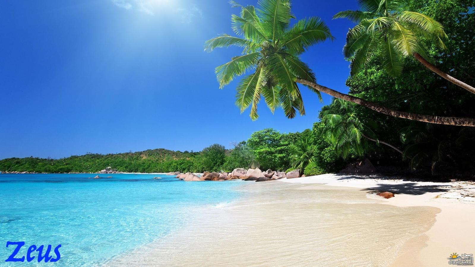 484748 المسافرون العرب الأماكن السياحية في سريلانكا