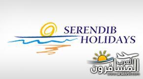 484769 المسافرون العرب البلد الجميل سيريلانكا