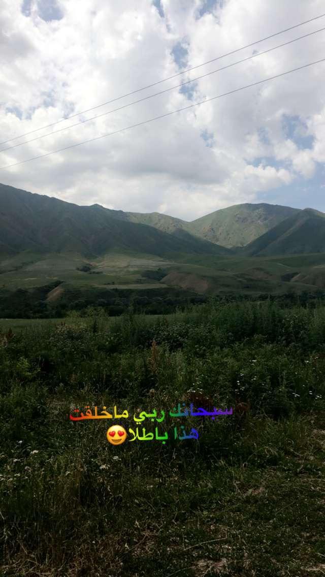 491758 المسافرون العرب قرقيزيا والاجواء الصيفية