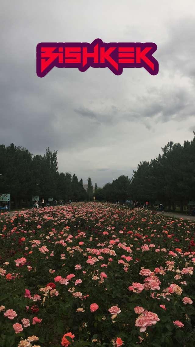 491760 المسافرون العرب قرقيزيا والاجواء الصيفية
