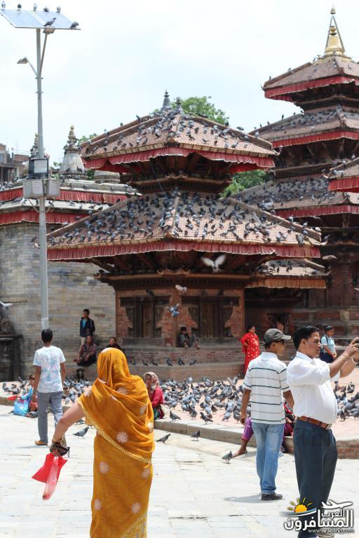 جولة فى دولة نيبال الرائعه 491841 المسافرون العرب