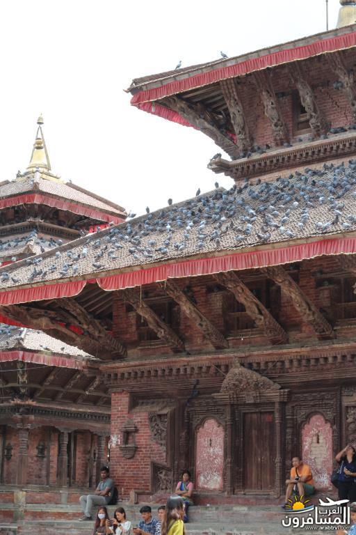 جولة فى دولة نيبال الرائعه 491845 المسافرون العرب