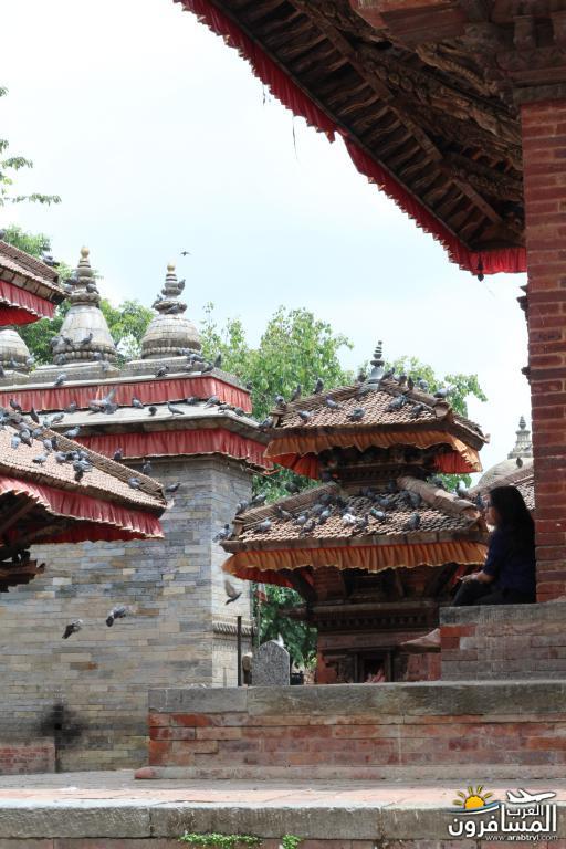 جولة فى دولة نيبال الرائعه 491848 المسافرون العرب