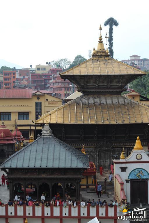 جولة فى دولة نيبال الرائعه 491904 المسافرون العرب