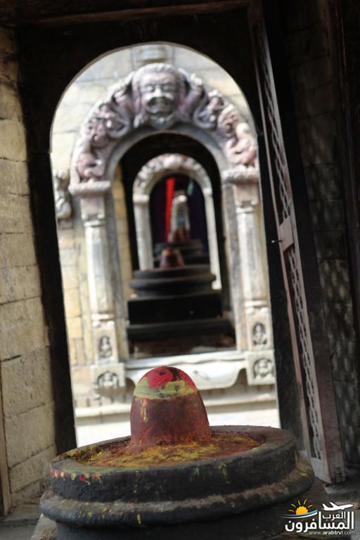 جولة فى دولة نيبال الرائعه 491905 المسافرون العرب