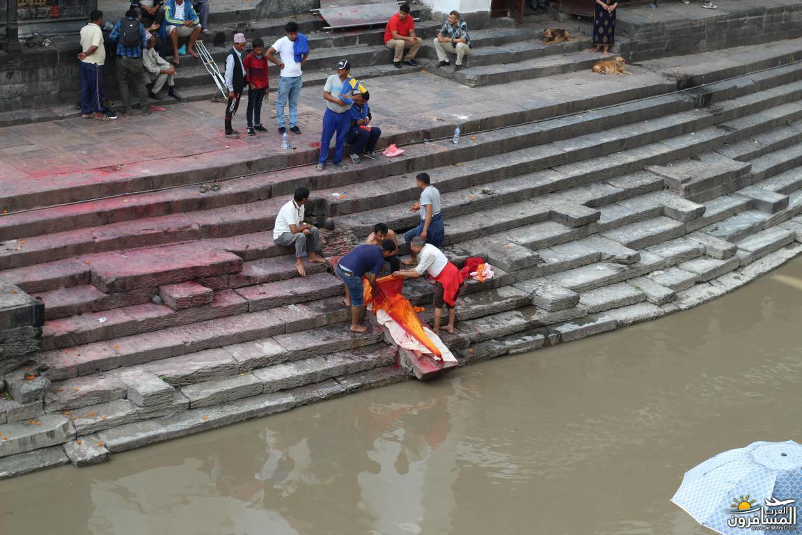 جولة فى دولة نيبال الرائعه 491908 المسافرون العرب