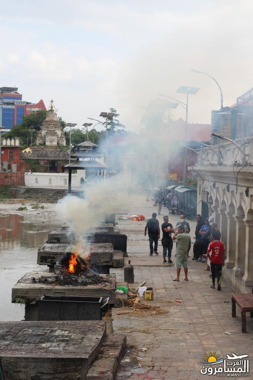 جولة فى دولة نيبال الرائعه 491912 المسافرون العرب