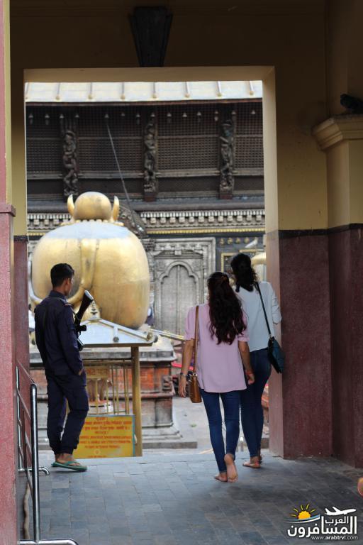 جولة فى دولة نيبال الرائعه 491914 المسافرون العرب