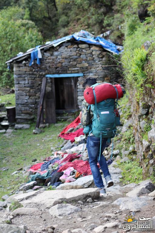 جولة فى دولة نيبال الرائعه 491952 المسافرون العرب